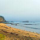 Misty #12 - Fisherman's paradise by Elisabeth Dubois