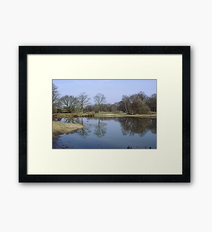 Mitcham Common Framed Print