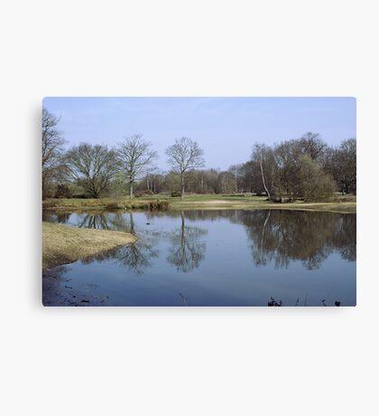 Mitcham Common Canvas Print