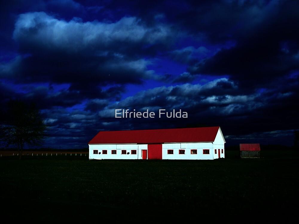 Outstanding ! by Elfriede Fulda