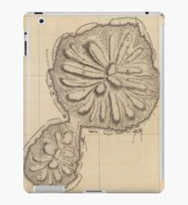 Old Tahiti Map iPad Cases & Skins | Redbubble on map of carribean, map of bahamas, map of bali, map of malaysia, map of seychelles, map of brazil, map of austrailia, map of spain, map of new zealand, map of thailand, map of moorea, map of costa rica, map of switzerland, map of fiji, map of pacific ocean, map of kwajalein, map of south pacific, map of french polynesia, map of bora bora, map of hawaii,