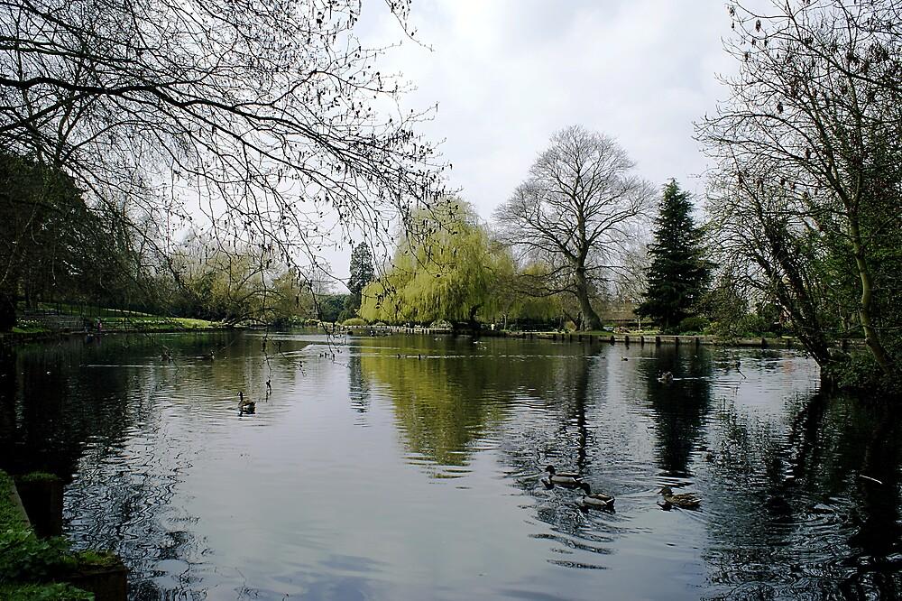 Beddington Park by Lennox George