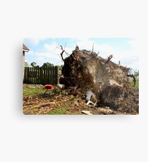 2011 08 21 Goderich, Ont. Tornado One Week Later Aftermath 6697 Metal Print