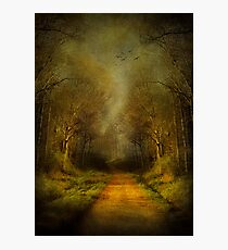 Unknown Footpath Photographic Print