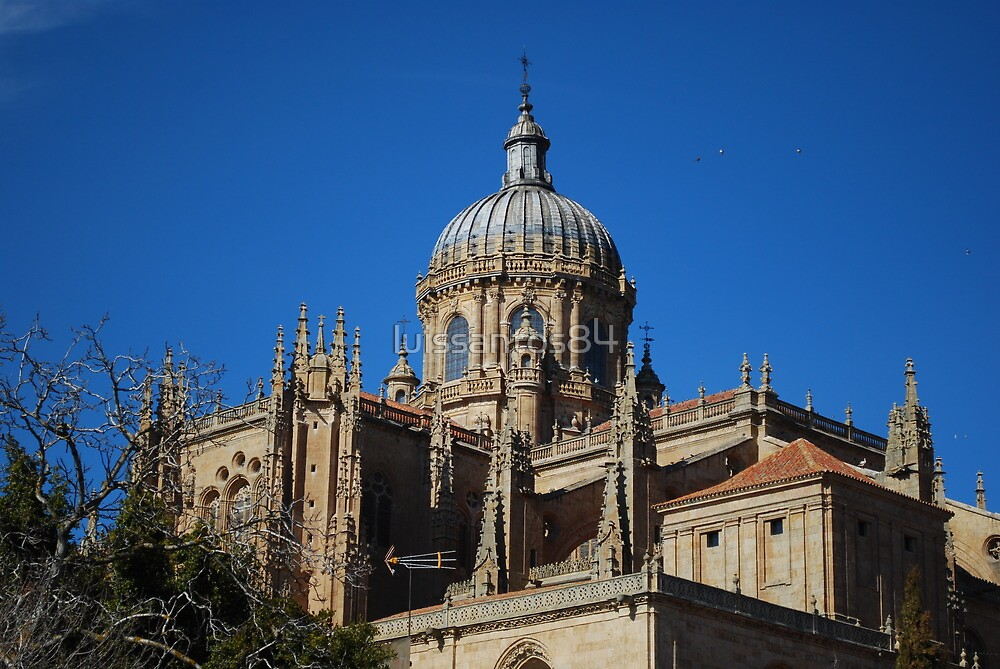 New Cathedral Dome in Salamanca by luissantos84