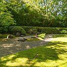 Zen Garden, Japanese Tea Garden by SusanAdey