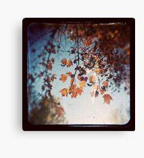 Autumn Ttv Canvas Print