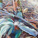 The Bush Floor by Lynda Robinson