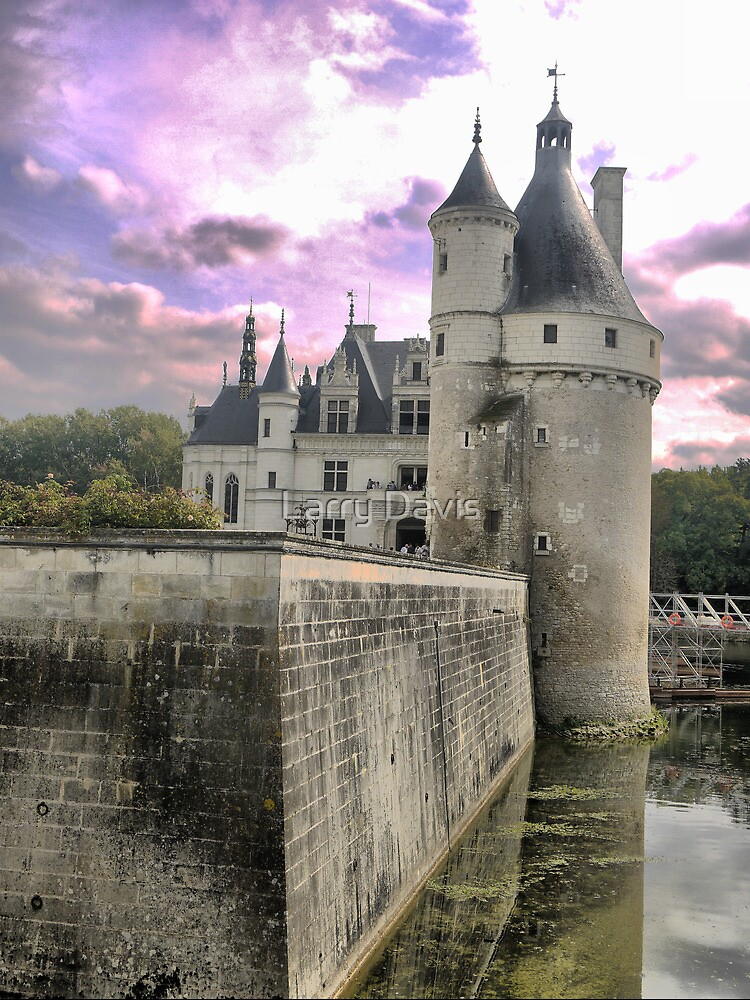 Reflecting On Chenonceau ( 4 ) by Larry Lingard-Davis