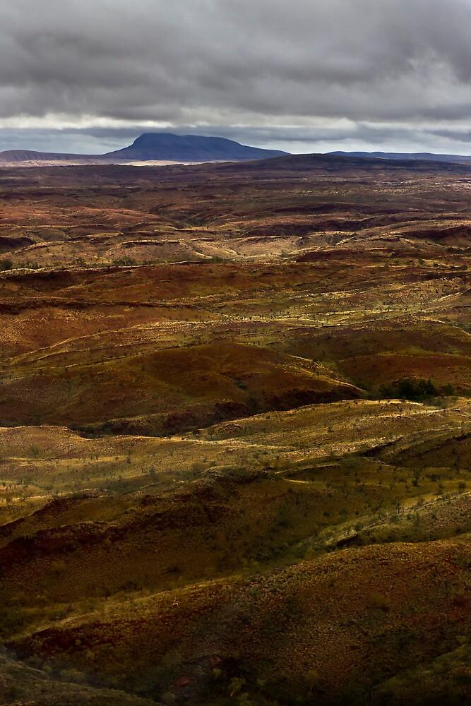 Mount Newman by Sheldon Pettit