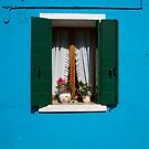 Burano window by Louise Fahy