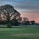 Dog Walking At Dawn by WhartonWizard