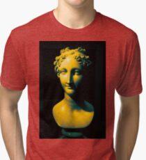 Gradient Scultpure #1 Tri-blend T-Shirt
