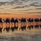 Camel Train Cable Beach. by bowenite