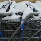 Snow Buggies by WildestArt