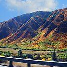 Foothills in Colorado by Jasper Glaspie