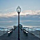Blue Morning by Debra Fedchin