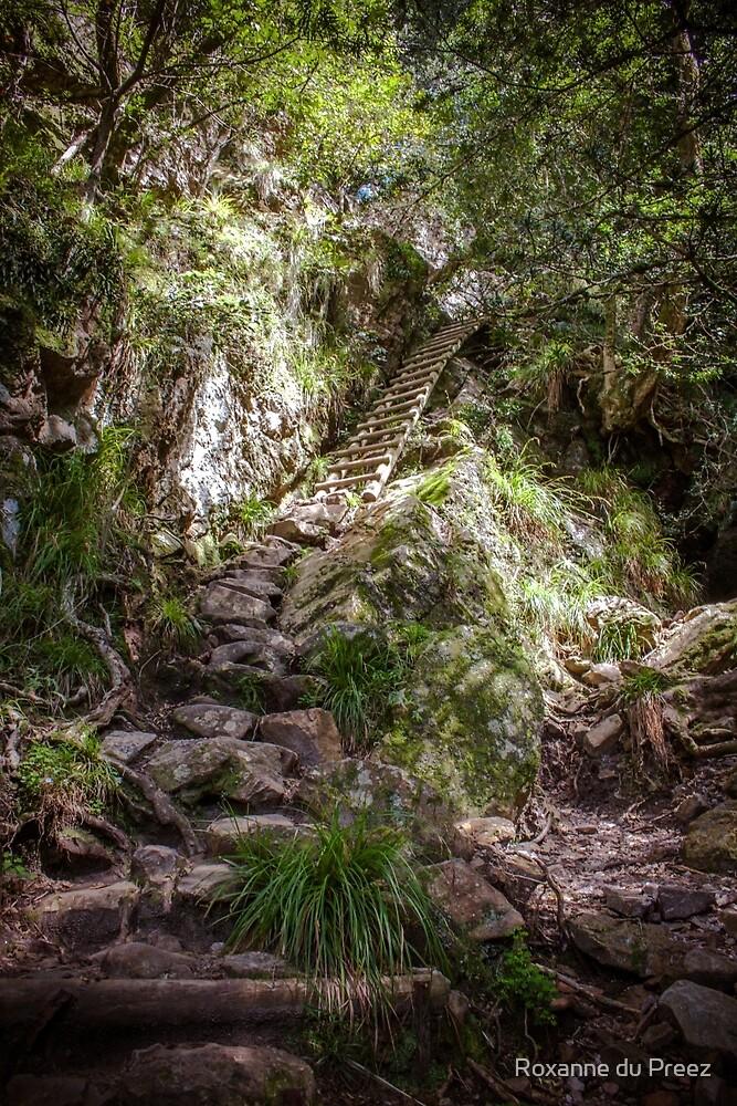 Stairway to Heaven by Roxanne du Preez