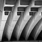 Ribs of the Opera House by Alfredo Estrella