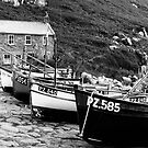 Penberth by Robert Down