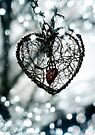 Secret Heart (Photograph) by Sybille Sterk