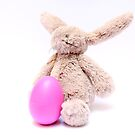 Easter Bunny and his egg by keki