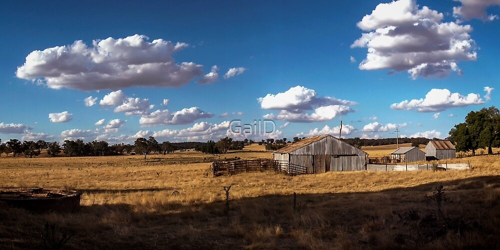 Long Dry Summer by GailD