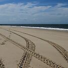 Make Tracks by Stephen Monro