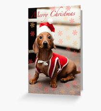 Merry Christmas Sausage Dog Greeting Card