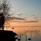 Peaceful Lake by Mattia  Bicchi Photography
