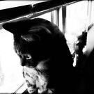 My lil boy...I wonder if it's safe out there !!! © by Dawn Becker