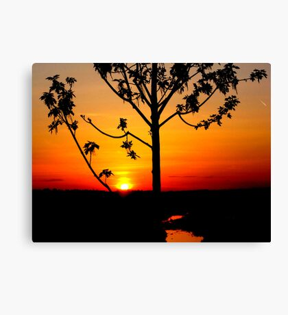 Sunset on The Snake River-Twin Falls Idaho, USA Canvas Print