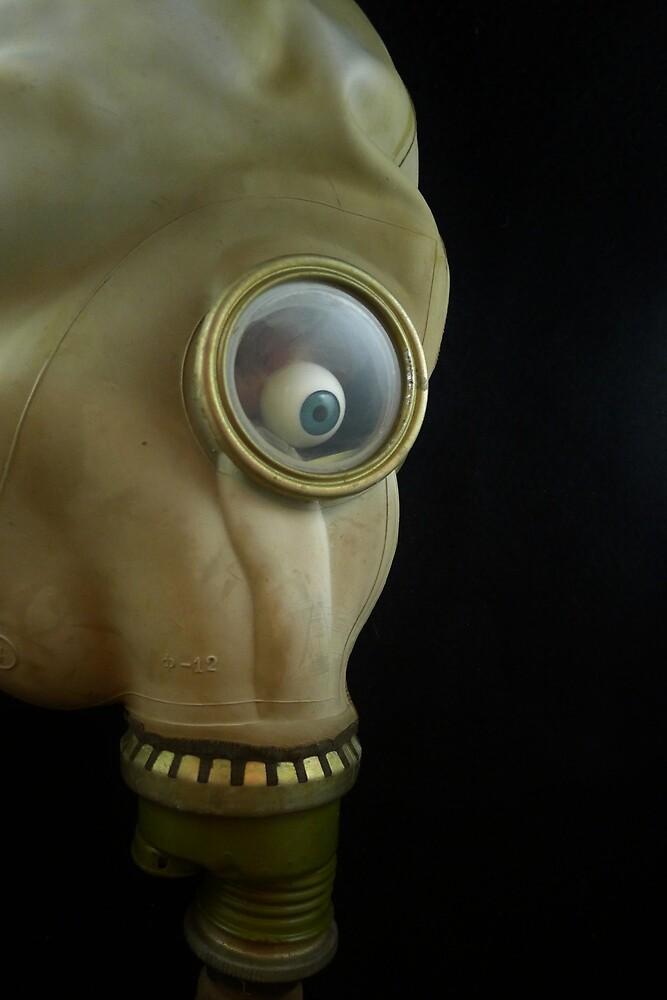 Mask by Barbara Morrison