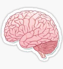 kleines Gehirn Sticker