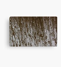 Marsh Grass Reflections 2 Canvas Print