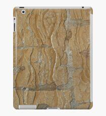 wall texture iPad Case/Skin