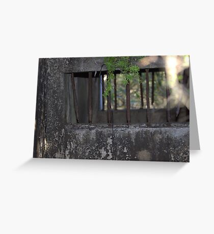 North Head Manly - Bars of a Army holding cell Greeting Card