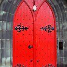 The Red Door by biddumy