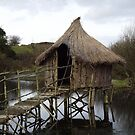 Crannog On Small Lake by ShaneMcCullough