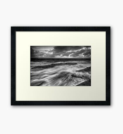 Teased by Nature Framed Print