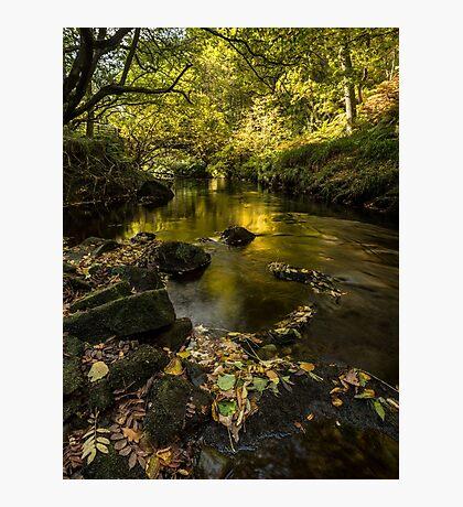 West Beck, Goathland, North Yorkshire Photographic Print