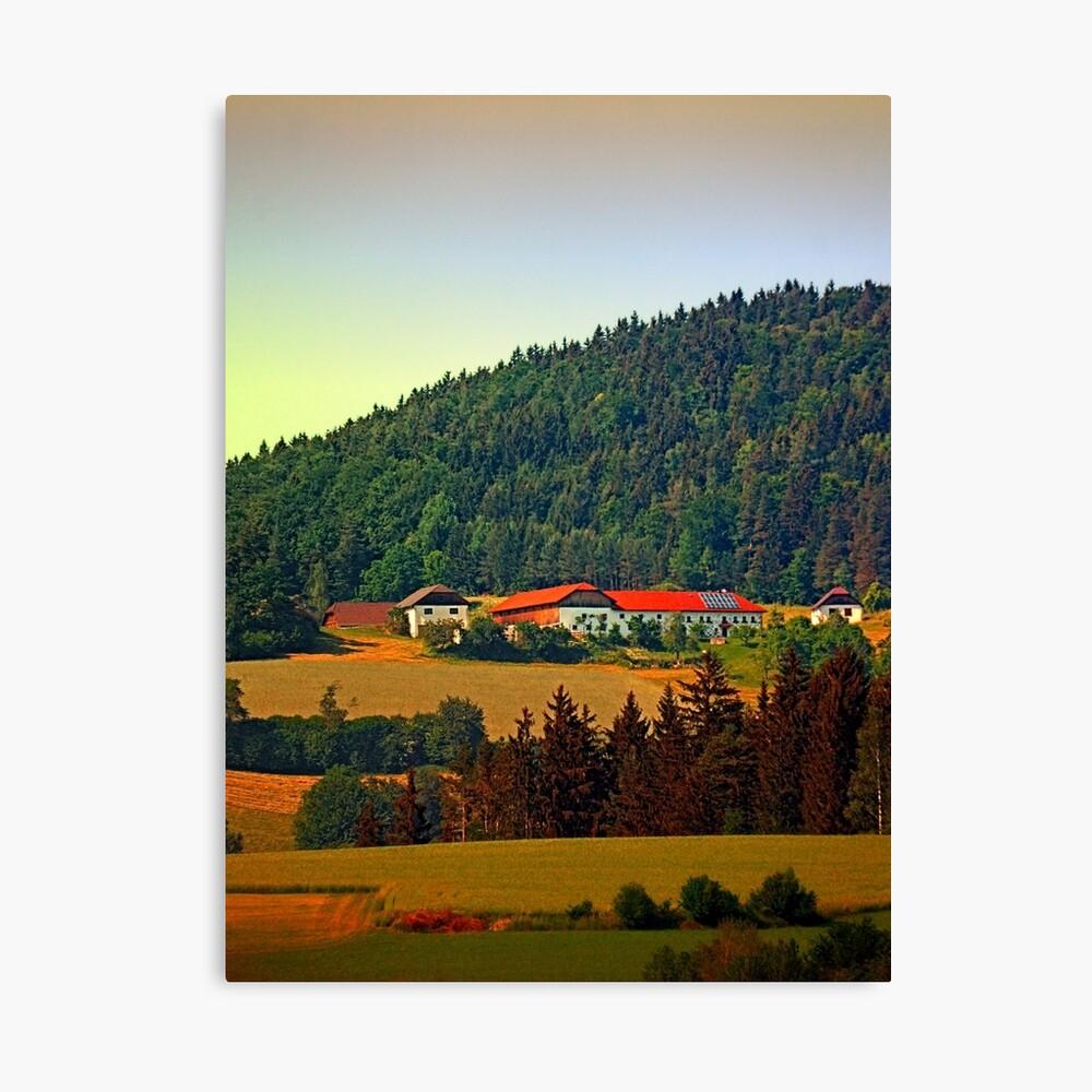 Farm taking an afternoon nap Canvas Print