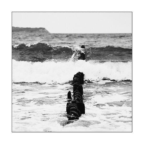 Baltic Waves by Falko Follert
