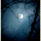 Moon in the trees..find the sacred heart by jammingene