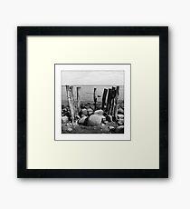 Cape Arkona Framed Print