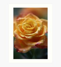 """75 years ago: great hit """"Autumn Roses"""", tango . F E A T U R E D  in Superbly Visual. Art Print"""