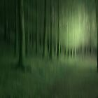 FOREST OF THE SPIRITS by leonie7