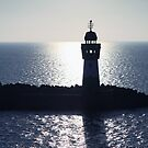 Lighthouse Harbor Ruegen in the backlight by Falko Follert