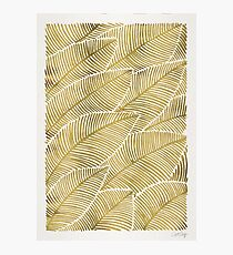 Tropical Gold Photographic Print