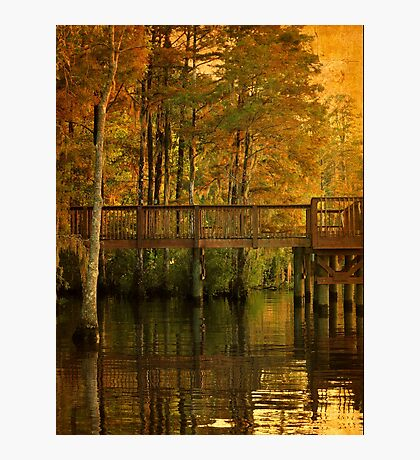 Fall River Reflection Photographic Print